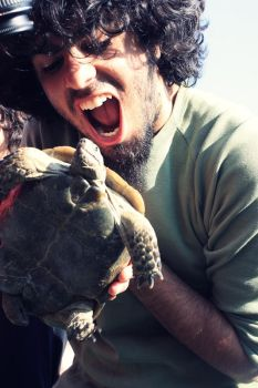 Lets Turtle by Rindane
