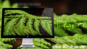 Fern - Wallpaper by GavinAsh