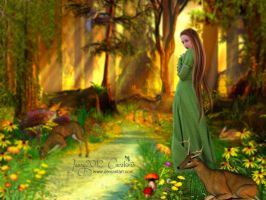 The Forest by Jassy2012
