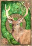 Celtic stag by Bumble-a-Bee
