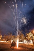 Happy new year by feudal89