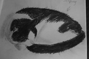 Cat - Life Drawing 2 by The-Mysterious-MJ