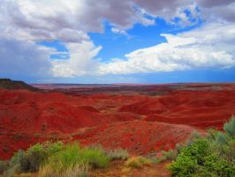 Painted Desert by DragonwolfRooke