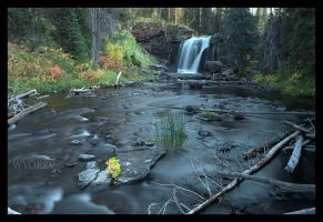 A Moose Fall by wyorev