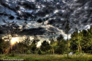 Sun breaks trough HDR by xMAXIx
