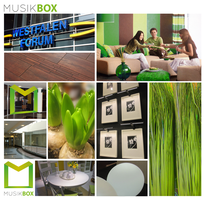 Musikbox Moodboard by Annmey