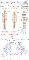 Basic Human Anatomy Tips by starca