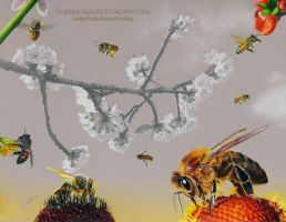 Bees by AmBr0