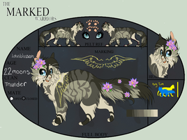Lotusblossom| THunderclan Warrior by foreverneon