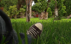 Grass nap by sixt0p