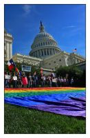 Equality March on Capital Hill by EatsNoCheese