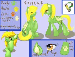 reference sheet - Farcuf by Farcuf