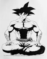 Son Goku meditation by darkogoku