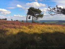 Gt. Longstone and Moor 04 by IanTP