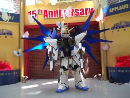 Strike Freedom Gundam cosplay by 310322094