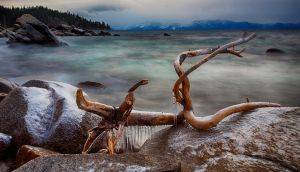 East Shore Tahoe Storm and Driftwood by sellsworth