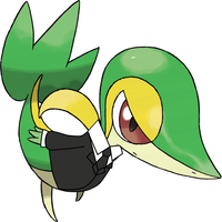 Snivy suit 3 by toamac