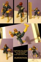 Captain Falcon! by MusIsDVDA