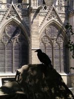 Notre Dame and Crow by Lahe