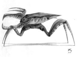 Starship Troopers Warrior Bug by xalres