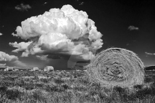 Thunderheads Over Alberta by CowtownHero