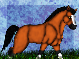 .:Brown Horse:. by graciegra