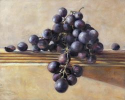grape_sketch_paint by Mindac