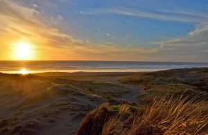 Bethells by BenCrowlePhotography