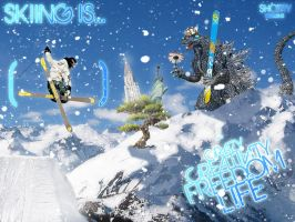 Skiing is___ by airshorty