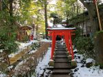 Kenrokuen in the winter (4) by wotawota