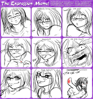 .Expression Meme - Me. by Kigurou