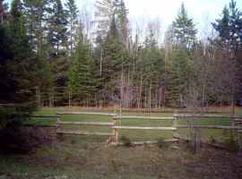 Fence, Woods II by Jenna-RoseStock