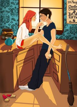 Harry and Ginny by hannahtess