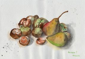 pears and chestnuts by feafox92