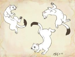 Dancing Ermines by Moody-Ferret