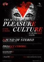 Pleasure Culture 2 by RIPIX