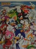 Sonic and Friends poster by BlazetheCat1445