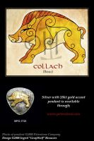 Boar - Celtic Animals by Illahie