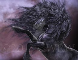 Black Fire by cwrw