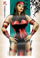 Elektra: Jade Dragon by MichaelCrutchfield