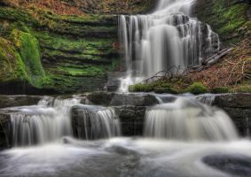 Scaleber Force by DL-Photography