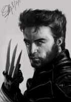 wolverine free comision by Mendezz18