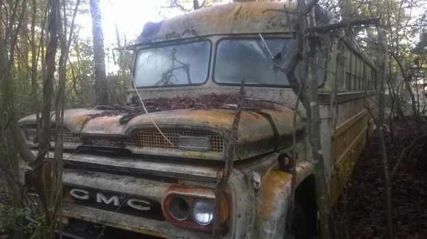 1 - 1966 Bluebird GMC - Project Brony Mobile by hunterN05