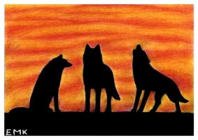 Wolves and the flaming sky by Elkenar