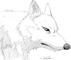 Wolfs Rain by CaptainCanada