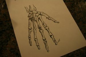 a skeleton hand i drew a while ago by mcm1011