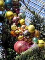 2007 Temperate House Chihuli Glass Centre Piece by aegiandyad