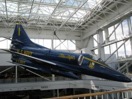 Blue Angels by ItsAllStock