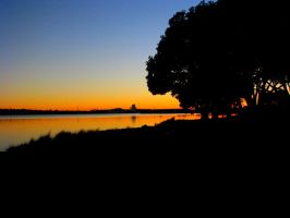 Dawn beyond the Tree by agreenbattery
