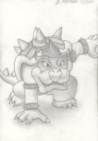 bowser 2 by hairykoopa